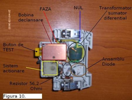 Fig10 radu mihai